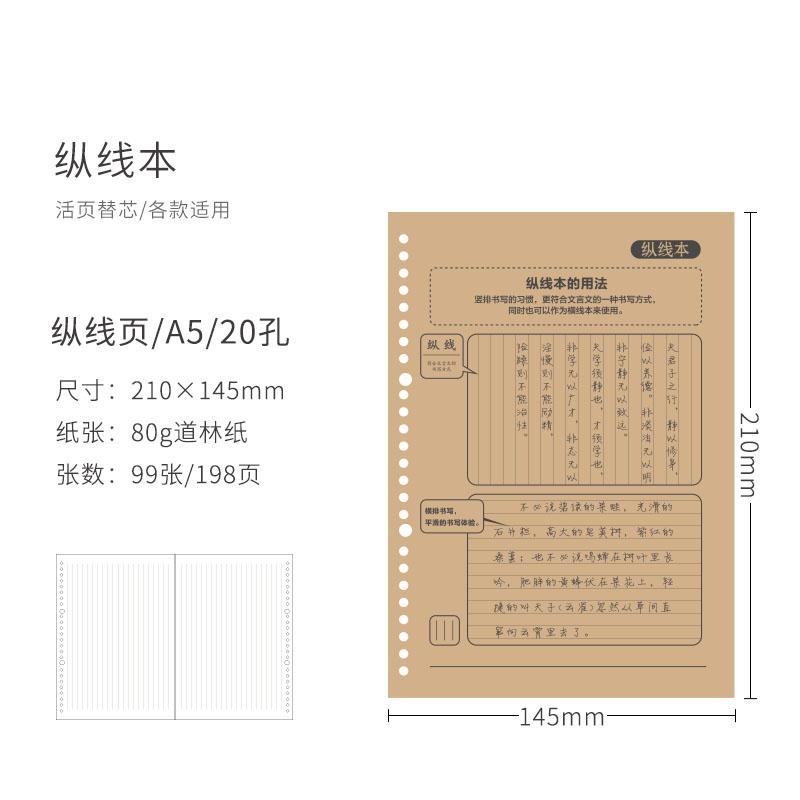 GuangBo 广博 通用活页笔记本替芯 纵线款 A5/20孔 99张/198页