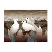张艳限量《山谷的白鸽》亲笔签名版画挂画
