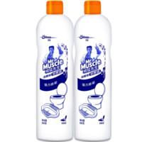 百亿补贴 : Mr Muscle 威猛先生 洁厕液 480g*2瓶装