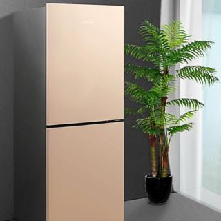 KONKA 康佳 BCD-178WEGX2S 定频双门冰箱 178L 金色