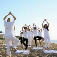 瑜伽视频教程 全套在线课程