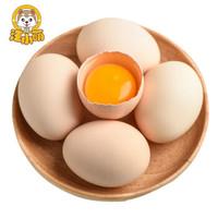 汪小萌 土鸡蛋-20枚 当日蛋当日发货