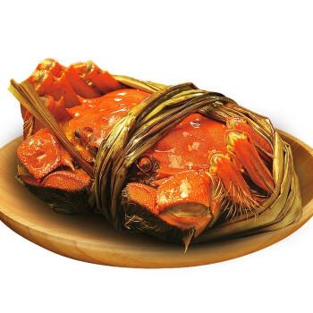 蟹爵全母16只2-2.3两大闸蟹  大蟹鲜活 生鲜螃蟹 *3件