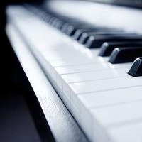 钢琴+电子琴视频教程 入门零基础在线课程