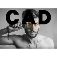 AutoCAD 室内设计/建筑设计/机械设计 视频教程