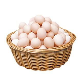 燕域田园正宗土鸡蛋农户散养新鲜草鸡蛋柴鸡蛋笨鸡蛋40枚装
