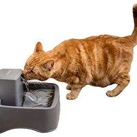 PetSafe Drinkwell Original 或 1/2 加仑宠物喷泉 – 猫和小型犬饮用喷泉 灰色 1/2 Gallon Fountain