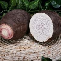 一粒春 荔浦芋头 2.5-2.6kg