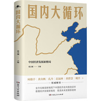 《国内大循环:中国经济发展新格局》