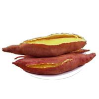 唐鲜生 沙地蜜薯 龙薯9号 精选中大果  5斤(10-15根)