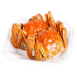 京东PLUS会员 : 京觅 鲜活大闸蟹现货 公3.0-3.4两 母2.0-2.4两 3对6只 *2件