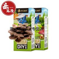 考拉精灵蘑菇diy种植原生态蘑菇种植盒可食用儿童节礼物 秀珍菇2盒装(送喷雾瓶)
