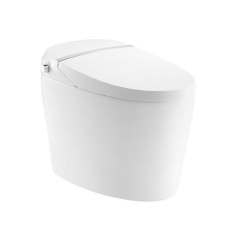 法恩莎卫浴一体智能马桶F21带烘干虹吸式即热多功能自动坐便器A10