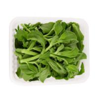 NANGUOXIANSHENG   新鲜冰草菜水晶菜  1.5斤 *2件