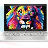 HP 惠普 星系列 星14 14英寸 笔记本电脑 酷睿i5-1035G1 8GB 512GB SSD MX330 银色