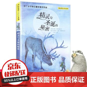 精灵与圣诞的秘密获奖大作家系列 诺拉苏若杰金著 8-10-12-14岁小学生课外阅读书籍