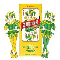 DONGPENG 东鹏 由柑柠檬茶 250ml*24盒