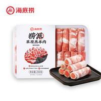 海底捞 捞派草原羔羊肉 250g   *12件