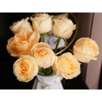 璞郁舍(PYS) 玫瑰鲜花花束 10支