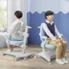 SIHOO 西昊 K35B 人体工学可升降学习椅