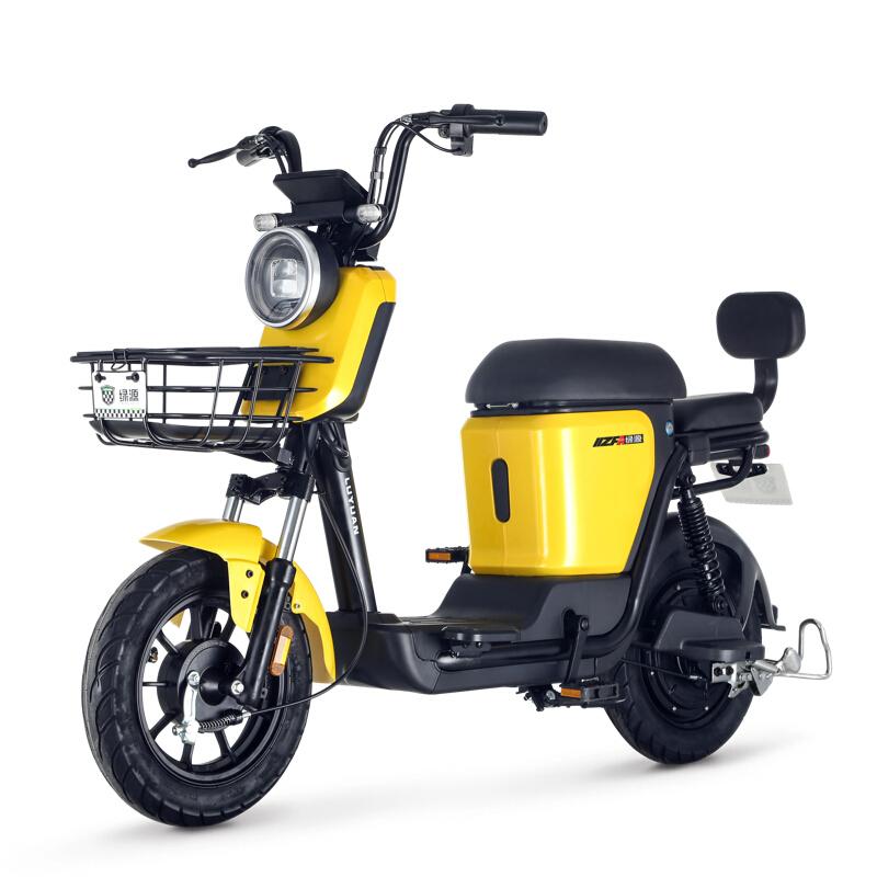 Luyuan  ZFA 蜜豆 48v24ah 锂电池新国标电动车