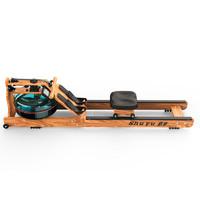 舒宇 SYDTJ01 专利尊享款 划船机