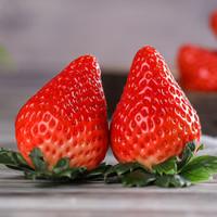 好货福利、京东PLUS会员: YONG GANG FARM/永刚农场 丹东99草莓 3斤大果实惠装