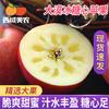 西域美农大漠冰糖心苹果4.7斤现摘新鲜水果脆甜红富士时令水果(5斤、70mm(含)-75mm(不含))