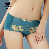 華歌爾Wacoal 華麗蕾絲舒適棉氨 平角褲 內褲 WP2518(165/95、藍綠色)