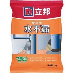 立邦 水不漏堵漏涂料 速凝型胶泥2kg