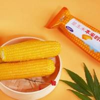 农田好货 10支装非转基因富硒超甜糯玉米12-15cm