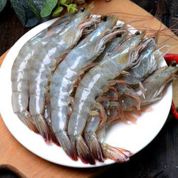 渔游记 鲜冻青岛大虾12-16cm(90-110只)净重3.3斤