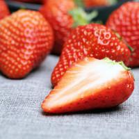 牛小花 丹东99草莓 3斤装(净重2.8斤) +凑单品