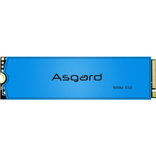 Asgard 阿斯加特 AN3系列 M.2 固态硬盘 1TB