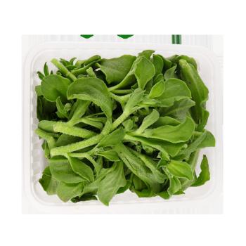芬果时光   新鲜冰草菜  净含量0.6kg *2件