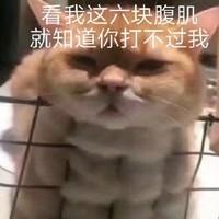 京东体育用品会场,偷偷练出八块腹肌,然后惊艳所有人~