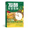 发酵完全指南:风味、营养和方法
