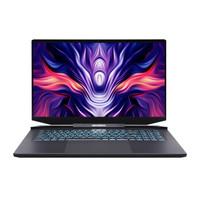 MECHREVO 机械革命 钛钽PLUS 17.3英寸游戏笔记本电脑(i7-10875H、16G、512G、RTX3060、2K、165Hz)