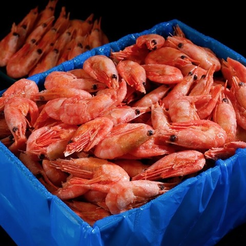 京东PLUS会员、限地区:渔游记 北极腹籽甜虾 净重2kg