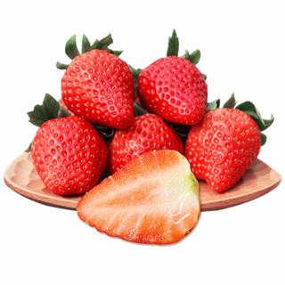 京东PLUS会员 :  yuguo 愉果 丹东99红颜奶油草莓 2斤 *2件