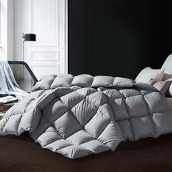 霞珍 星语 95%白鹅绒100支全棉冬被 200*230cm