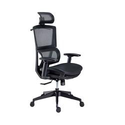 YANXUAN 网易严选 多功能人体工学转椅 小蛮腰新款+尼龙脚