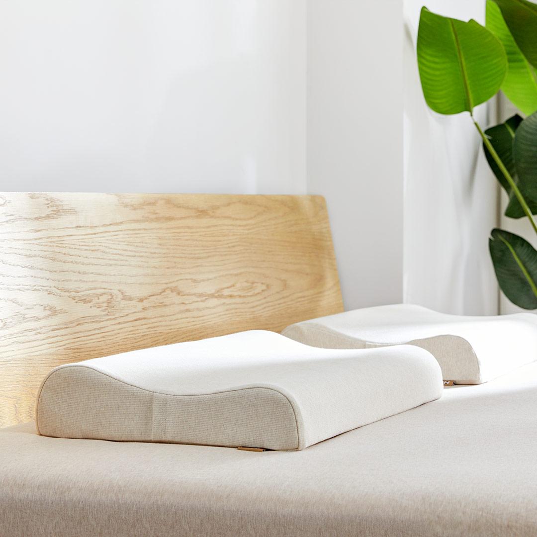 8H 可水洗特拉雷成人乳胶枕