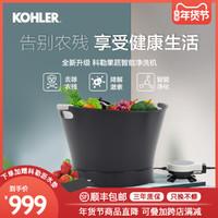 科勒果蔬清洗机洗菜机家用消毒机洗奶瓶自动电解水果蔬解毒净食机