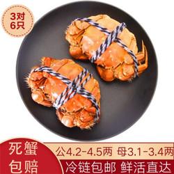 水淼鲜 洪湖大闸蟹鲜活螃蟹现货 活鲜生鲜礼品海鲜礼盒水产湖蟹 公4.2-4.5两 母3.1-3.4两 3对6只