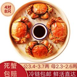 水淼鲜 洪湖大闸蟹鲜活螃蟹现货 生鲜活鲜海鲜礼盒水产礼品湖蟹 公3.4-3.7两 母2.3-2.6两  4对8只 *2件