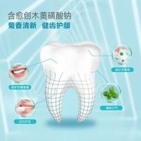 纳爱斯 牙膏 清凉冰菊 200g*6 家庭装 清新口气 减少牙菌斑 固齿 护龈 冰菊口味 清火