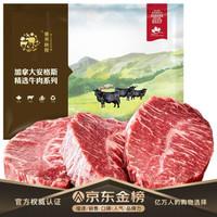 春禾秋牧 安格斯AAA原切牛排套餐1.16kg/(6份)谷饲200天 加拿大牛肉生鲜 含料包 *2件 +凑单品