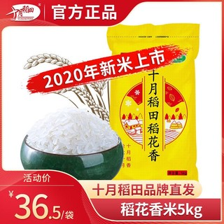 十月稻田 稻花香米5kg黑龙江 东北粳米东北大米香米