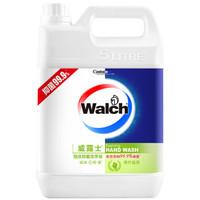 Walch 威露士 青柠盈润 泡沫抑菌洗手液 5L+225ml